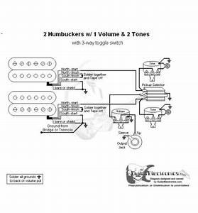 2 Humbuckers  3 1 Volume  2 Tones