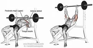 Incline Barbell Bench Press Instructions And Video