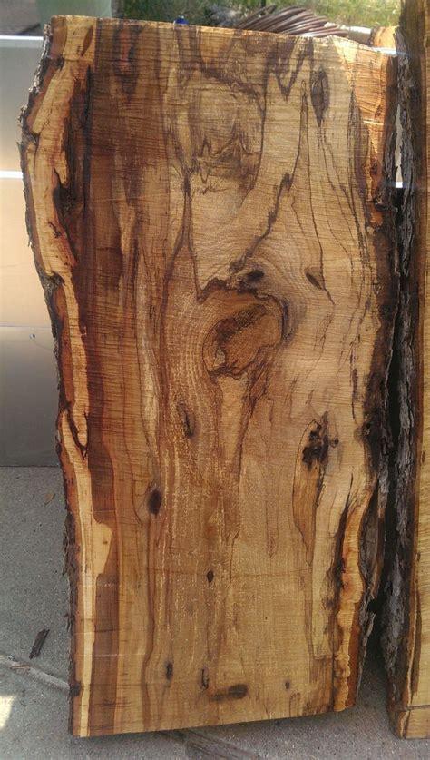 thick wood slabs oak pecan  elm  countertops