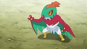 Hawlucha Pokemon Ash Images   Pokemon Images