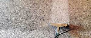 Chemical Free Carpet And Air Duct Cleaning In Chicago And