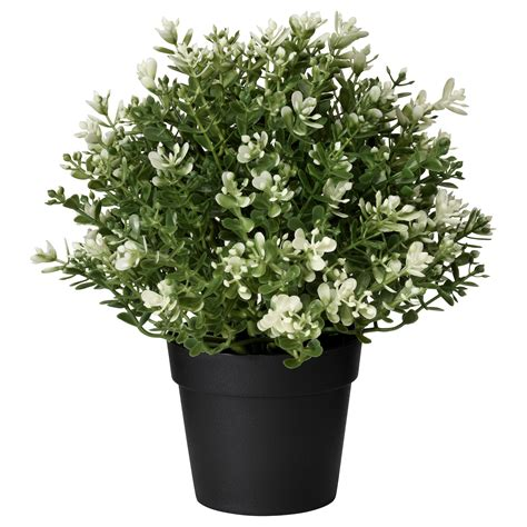 potted plant artificial flowers artificial plants ikea