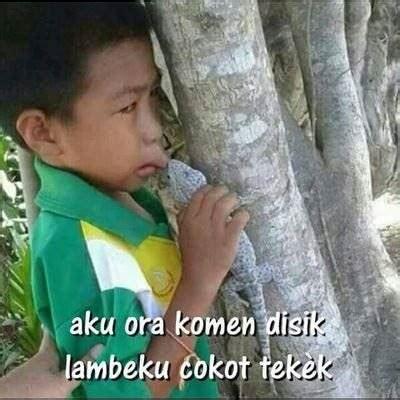 Gambar Lucu Orang Gila Bahasa Jawa Tulisan Lucu