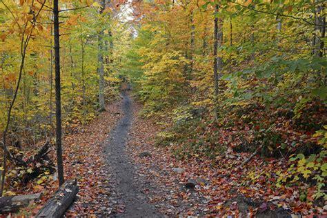best hiking near me how to find hiking trails near me ranger mac