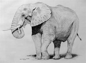 African Elephant - Pencil Jammers