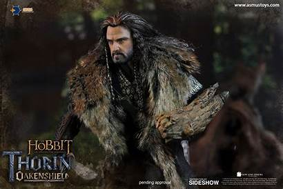 Thorin Hobbit Oakenshield Toys Asmus Figure Scale