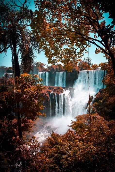 green trees  waterfalls photo  water image