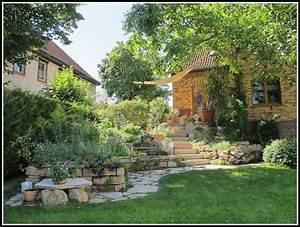 Pflanzen sichtschutz terrasse k bel download page beste for Pflanzen sichtschutz terrasse kübel