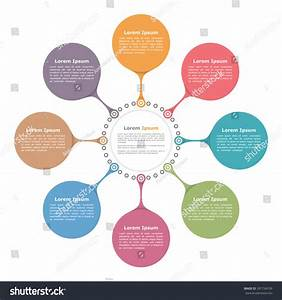 Circle Flow Diagram Template Eight Elements Stock Vector