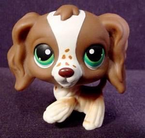 cute little lps dog photo