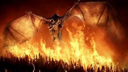 Fire Wings Dragon Forest Wallpapers Flight Desktop