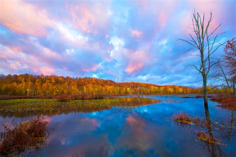 Killbuck Marsh Sunrise Beautiful Ohio Fall Scenery