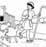 Coloring Shepherd Sheep Psalm Bible Pages David Para Boy Craft Colorear Pastor Ovejas Pastore El Jesus Buon Dibujos Oveja Sheets sketch template