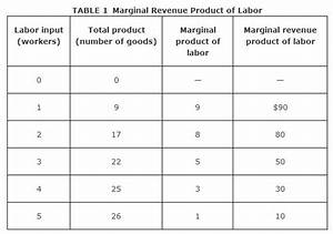 Labor Demand and Supply in a Perfectly Competitive Market