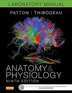 9780323319638  Anatomy  U0026 Physiology Laboratory Manual And