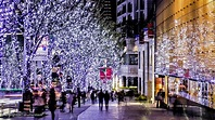 Roppongi Nightlife - Where to Go at Night in Roppongi - Tokyo