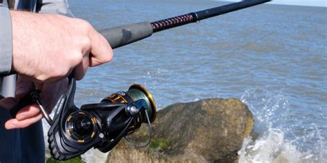 acl ng top   buy fishing rod bdo comparison acl