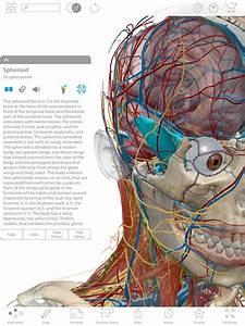 Compare Human Anatomy Atlas And Anatomy  U0026 Physiology
