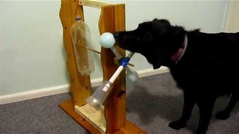 home  treat dispensing windmill  dogs