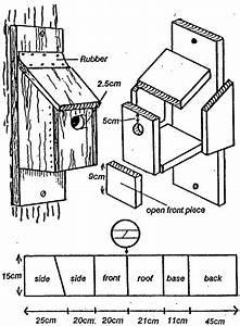 Bird And Bat Boxes