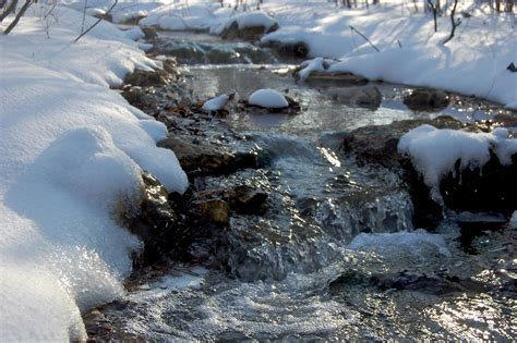snowy stream english woodland garden stream winter