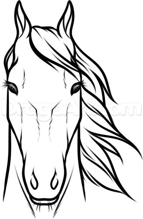 easy   draw  horse head step  step yahoo image