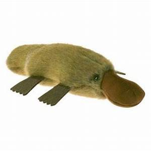 Australian Made Platypus Soft Toy Souvenirs & Gifts – Bits
