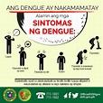 Philippines dengue outbreak surpasses 300,000 case mark ...