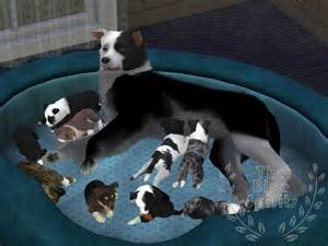 Sims 3 Pets Dogs Puppies