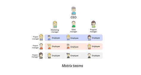 types  teams advantages  disadvantages blog