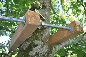 Comment Construire Une Cabane à écureuil : cuisine fabriquer une cabane en bois dans un arbre mzaol comment construire une cabane dans ~ Melissatoandfro.com Idées de Décoration