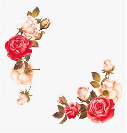 Border Flower Floral Clipart Transparent Kindpng