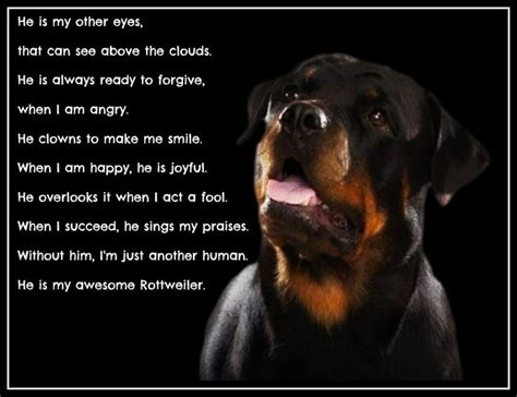 Rottweiler Quotes And Sayings. QuotesGram