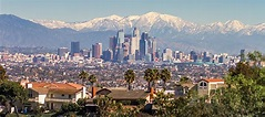 2020 Census: Counting Los Angeles County - Public Policy ...