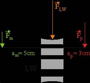 Gewichtskraft Berechnen : einfache maschinen hebel am menschen belastung der wirbels ule leifi physik ~ Themetempest.com Abrechnung