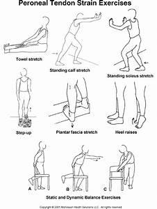 Peroneal Tendon Strain Exercises  Illustration