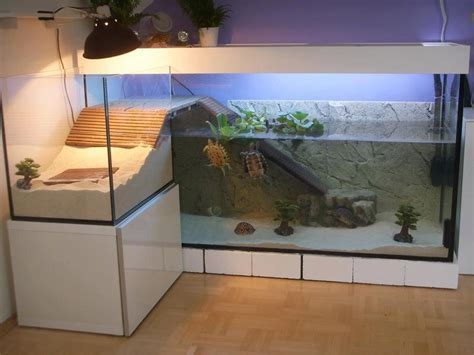 aquarium tortue de floride id 233 e d 233 co pour aquarium tortue 224 voir tortue aquarium tortue et idee deco