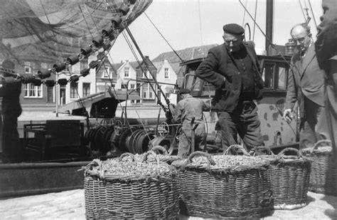 Platbodem Naar Engeland by Zeeuwseankers Nl Garnalenvisserij
