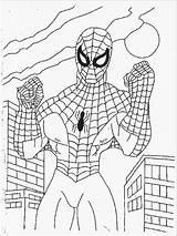 Spiderman Coloring sketch template