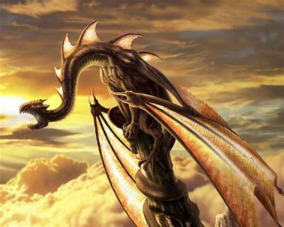 Dragon Desktop Wallpapers Backgrounds Dragonfly Heart String