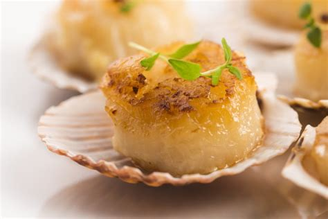 cuisine coquilles jacques coquilles st jacques recipe epicurious com