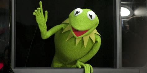 Meme Frog Kermit The Frog Memes The Most Iconic Kermit Memes On The