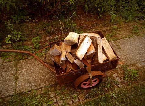 Holz Für Feuerkorb holz f 252 r feuerschale und feuerkorb eine analyse die