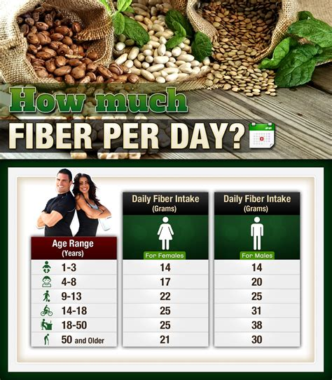 Per Day by How Much Fiber Per Day To Balance Nourishment