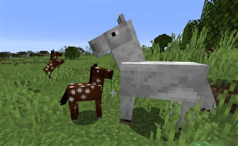 minecraft horse horses foals wild breeding two tamed although appear