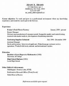 SIMPLE RESUME TEMPLATE Free Job Cv Example