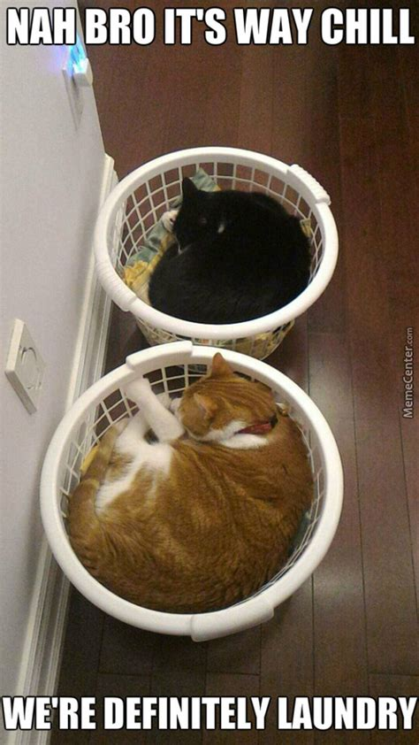 Laundry Memes - laundry memes best collection of funny laundry pictures
