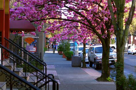 portland streets walkable oregon most