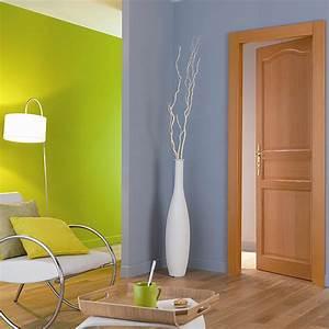 Decoration De Porte Interieur : portes d int rieur en bois 100 r novation 100 d co ~ Teatrodelosmanantiales.com Idées de Décoration