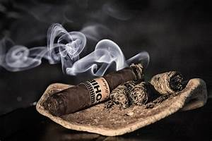 How to Smoke a Cigar Without Going Up In Smoke @ Cigar ...